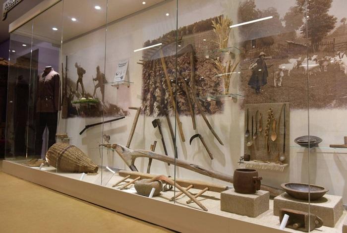 Абхазский государственный музей (Сухум) и его филиалы в Гудаутском и Гульрипшском районах