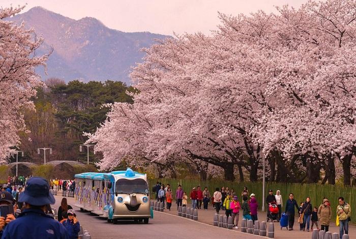 Большой Сеульский парк