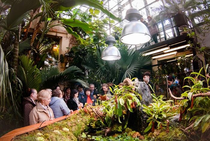 Музей диких насекомых