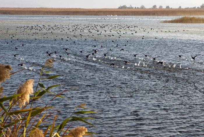 Джемете Чембурское озеро