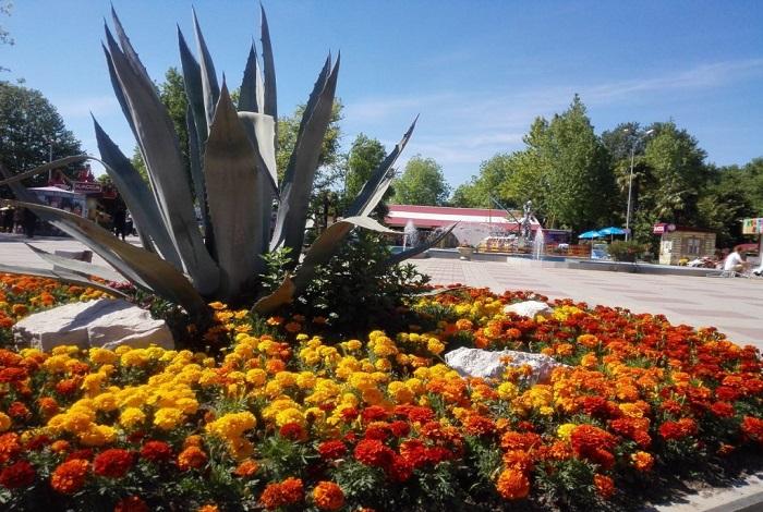 Парк культуры и отдыха (центральный)