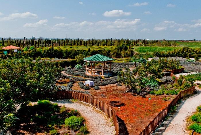 Ботанический сад с лабиринтом