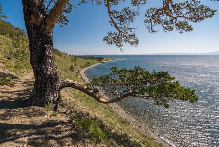 Большая Байкальская тропа (ББТ)