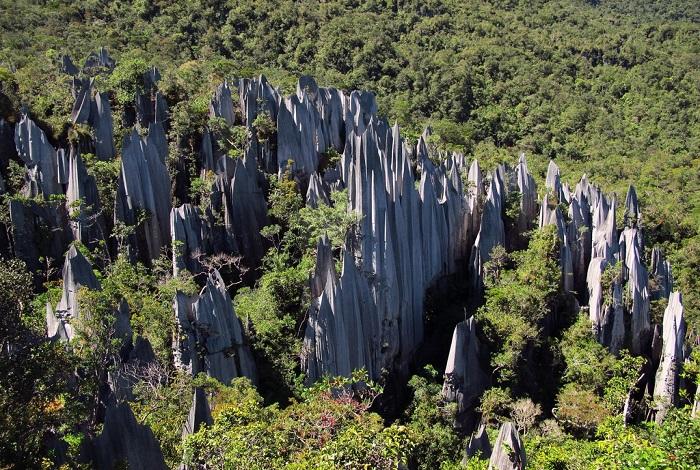 Национальный парк Гунунг-Мулу