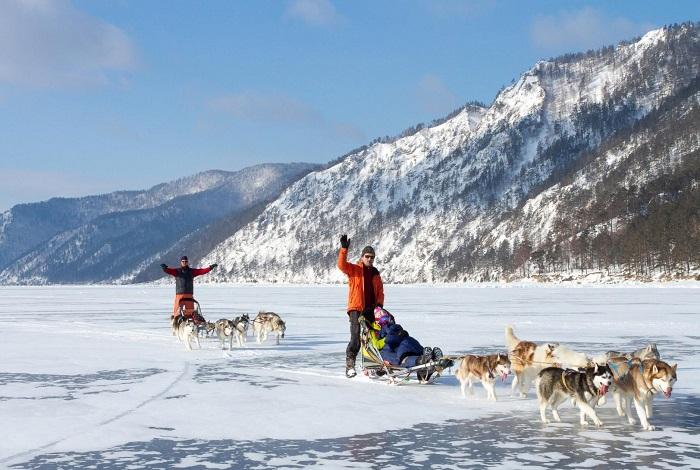Катание на собачьих упряжках и снегоходах