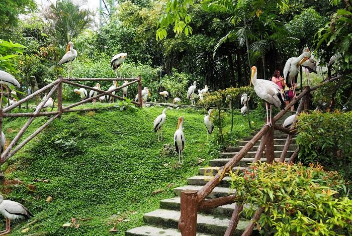 Куала-Лумпурский парк птиц
