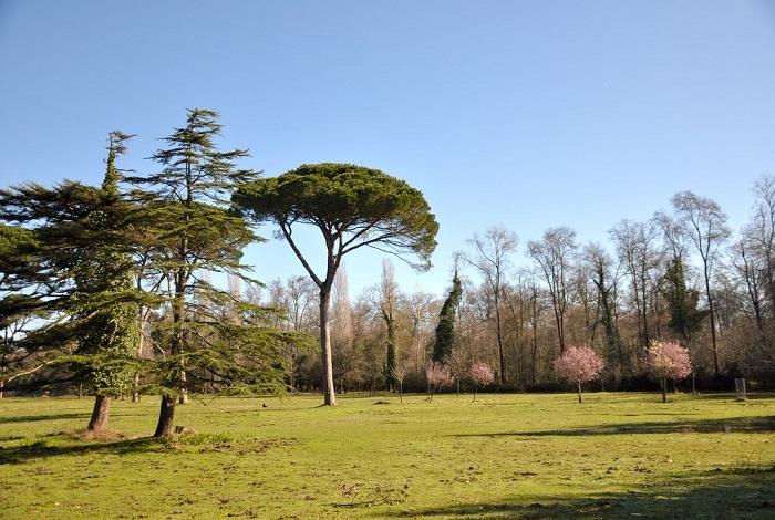 Природный парк Мильярино