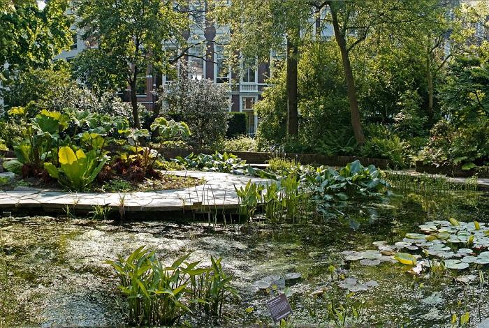 Хортус Ботаникус (Ботанический сад)