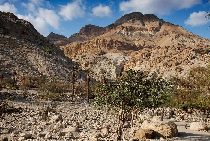 Национальный парк и заповедник Эйн-Геди